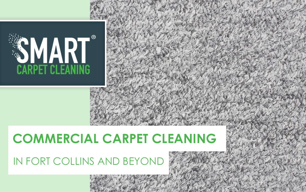 Commercial Carpet Cleaning In Fort Collins And Beyond