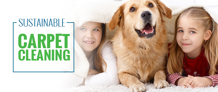A Deeper Look Into SMART® Carpet Cleaning