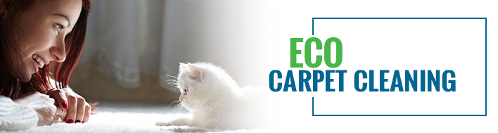 Green Carpet Cleaning: Eco Carpet Cleaning with SMART®